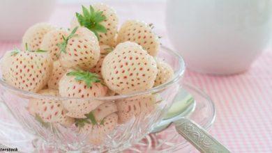 Photo of Ծանոթացեք.  նոր, սպիտակ ելակ՝ արքայախնձորի համով