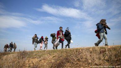 Photo of Президент Турции призвал Грецию открыть границу для мигрантов