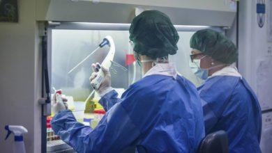 Photo of В Италии категорически отвергли лабораторное происхождение коронавируса.ТАСС