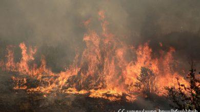 Photo of Հրդեհ «Գյումրիի անտառնտեսություն» մասնաճյուղի տարածքում