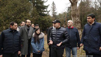 Photo of 10 մլն հայով տնկում ենք 10 մլն ծառ՝ 10-րդ ամսվա 10-րդ օրը. վարչապետը ծրագրի շրջանակում մայրի ծառի սերմ է ցանել