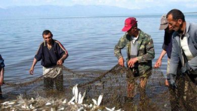 Photo of Ձկնորսությունը Սևանա լճում՝ խիստ հսկողության տակ. նախարարությունը ներկայացրել է նոր նախագիծ