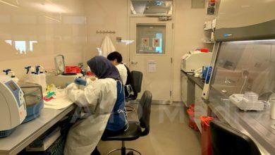 Photo of В Грузии число подтвержденных случаев коронавируса достигло 188. aliq.ge