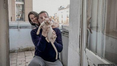Photo of Заперты вместе. Как вынужденная изоляция влияет на отношения