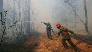 Photo of Чернобыль: почему пожары вернутся и что с ними делать