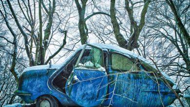 Photo of «Настоящая сказка»: удивительный мир заброшенных автомобилей в фотографиях