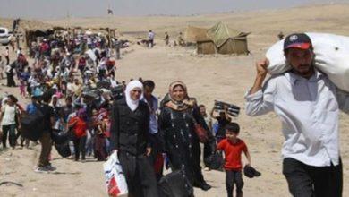 Photo of Թուրքիայում կտրուկ նվազել է սիրիացի փախստականների թիվը