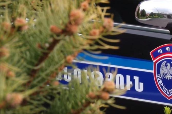 Photo of Новой Патрульной службе в Армении быть: депутаты одобрили