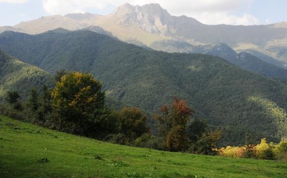 Photo of Կովկասի բնության հիմնադրամը Հայաստանին նոր դրամաշնորհ է տրամադրել