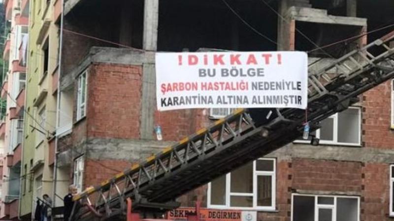 Photo of На севере Турции введён карантин из-за опасений по поводу вспышки сибирской язвы