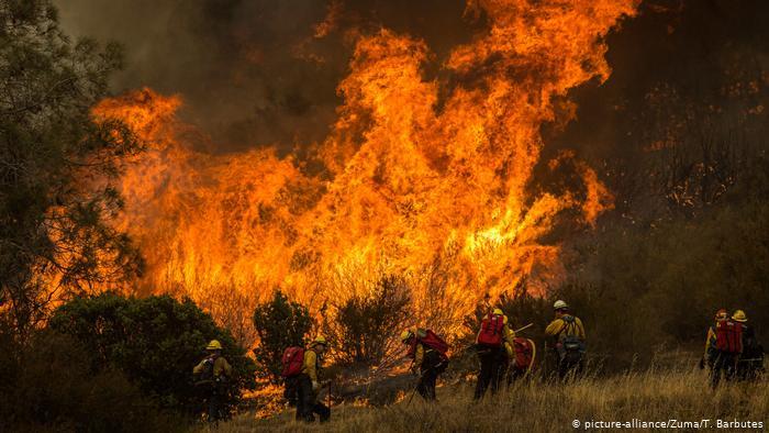 Photo of Калифорния из-за крупных лесных пожаров попросила о помощи