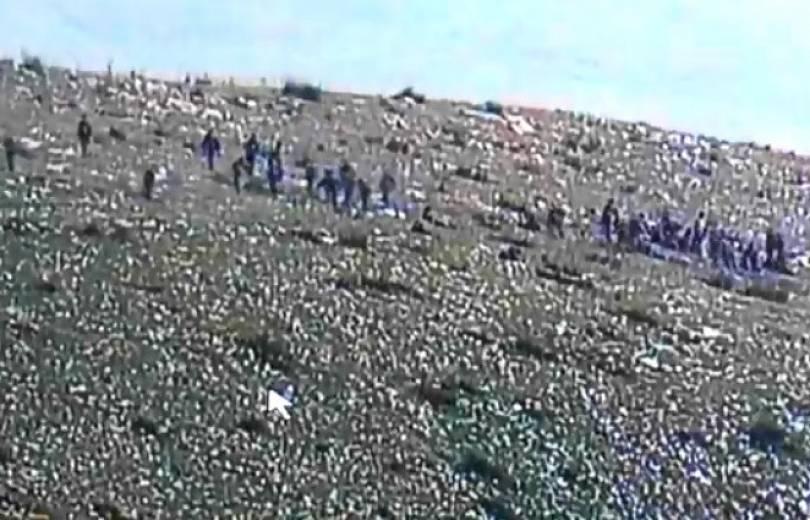 Photo of Новое видео, свидетельствующее о нахождении в зоне конфликта наемных террористов