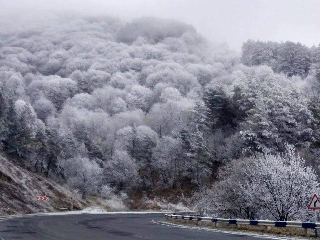 Photo of Ապարանի, Ճամբարակի, Սևանի տարածաշրջանների ճանապարհներին և Դիլիջանի ոլորաններում ձյուն է տեղում