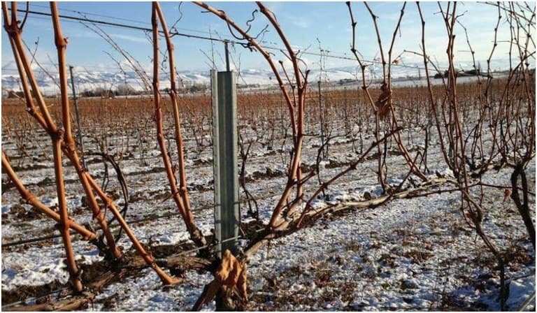 Photo of Սպասվում է օդի ջերմաստիճանի նվազում՝ գիշերը մինչև -10…-12°C