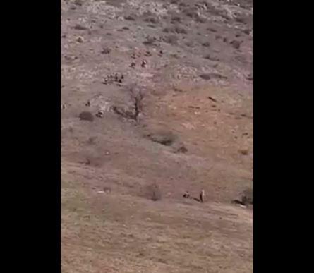 Photo of Как азербайджанские военные подступили к армянскому селу Хин Шен в Карабахе