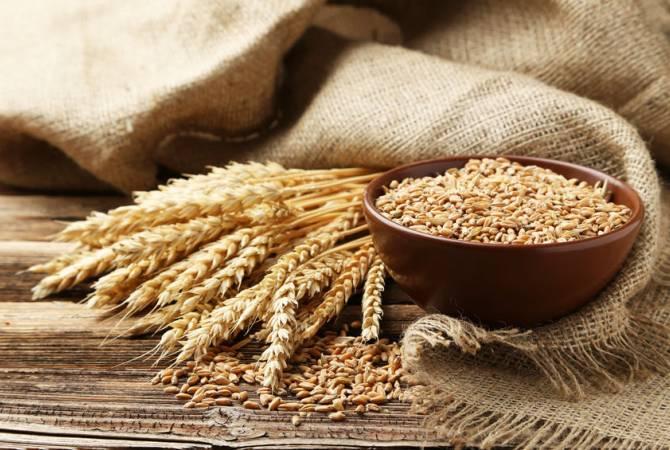 Photo of Անգամ համավարակի, պատերազմի պայմաններում հացահատիկի մատակարարումը Հայաստան չի դադարել. փոխնախարար
