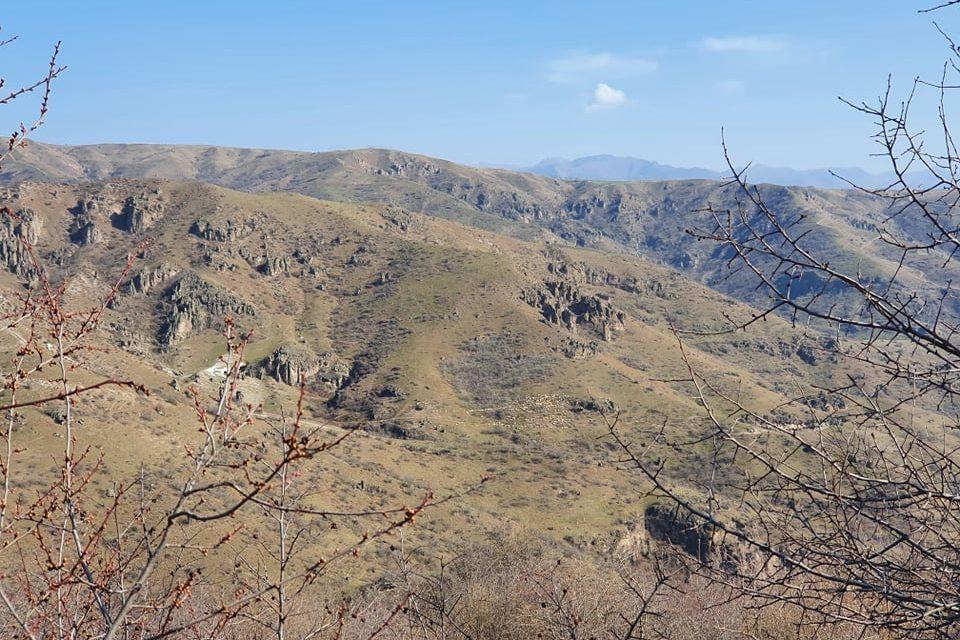 Photo of В Хндзореске азербайджанцы подошли к пастуху и в течение считанных минут, оставив всего 12 голов овец, удалились. Администрация села