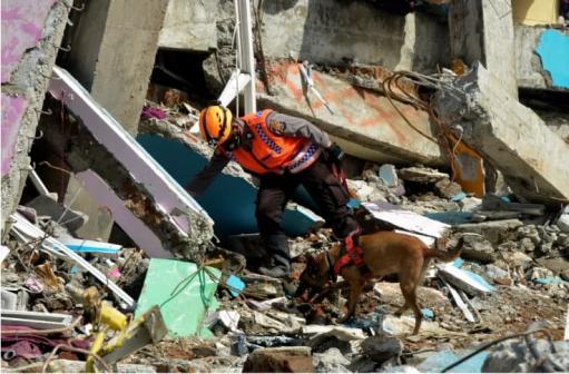Photo of При землетрясении в Индонезии погибли шесть человек