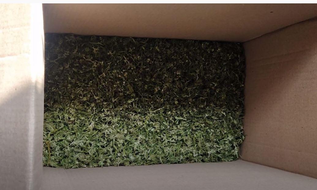 Photo of Կոտայքի ոստիկաններն առանձնապես խոշոր չափի թմրանյութ են հայտնաբերել