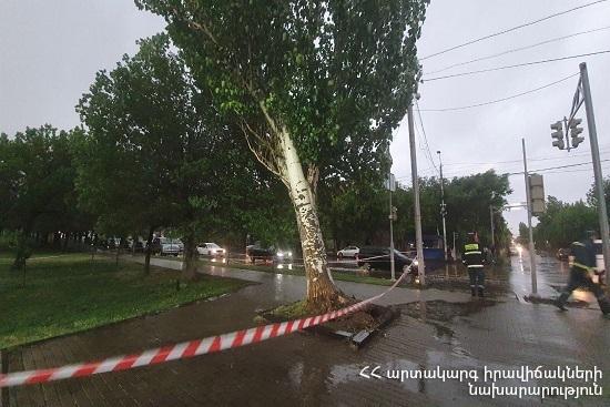 Photo of В результате шквалистого ветра в различных городах повреждены перекрытия крыш, деревья и электрические провода
