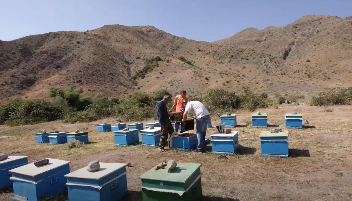 Photo of «Մեր գյուղը շատ գեղեցիկ է, օդը մաքուր է, սնունդը՝ բնական»․ էկո-արտադրություն Ուրցաձորում