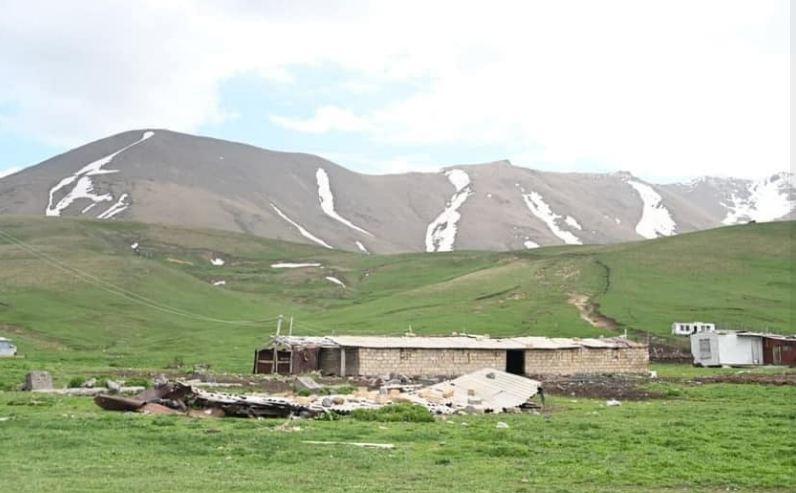 Photo of ЗПЧ: Азербайджанские военные попытались украсть порядка 20 лошадей