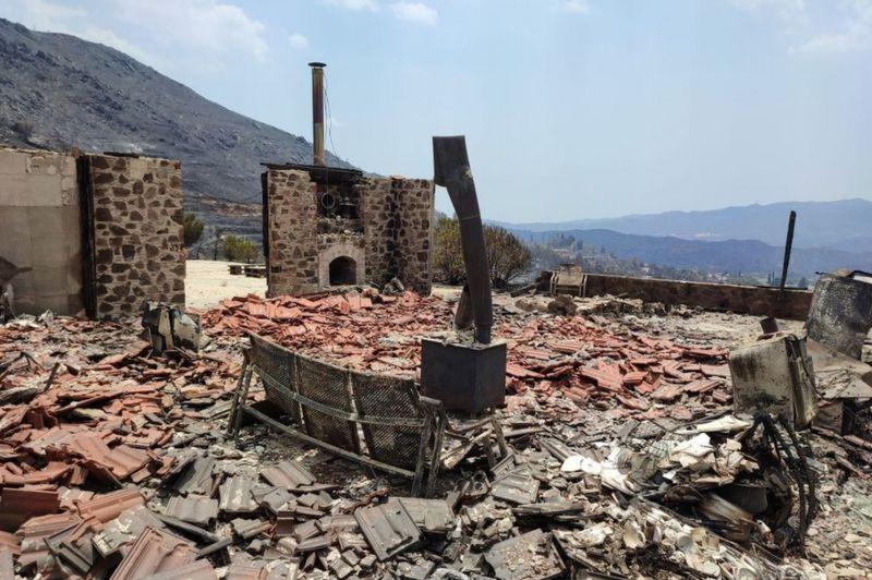 Photo of На Кипре бушует лесной пожар. Власти называют его самым страшным в истории страны и просят о помощи