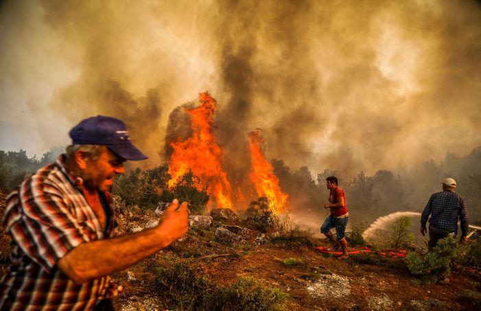 Photo of Անթալիայի 16-ամյա բնակչի են ձերբակալել. նա խոստովանել է՝ Մանավգաթում անտառ է հրդեհել