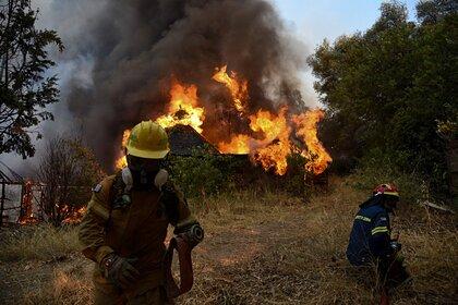 Photo of Грецию охватили десятки лесных пожаров