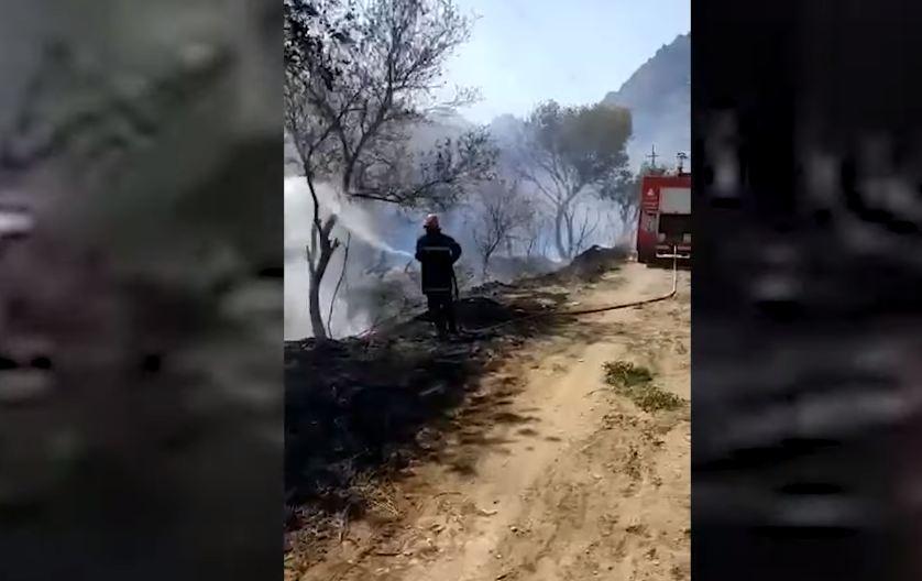 Photo of Иранские спасатели помогли армянским коллегам в тушении лесного пожара в районе Мегри
