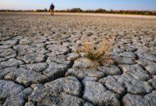 Photo of Վանա լճի մակարդակի նվազումը վտանգում է լճի էկոհամակարգը